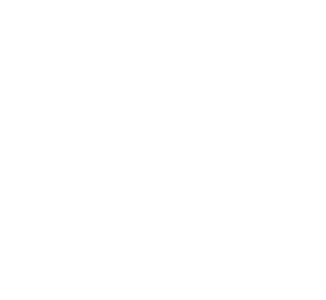 bowl300x300